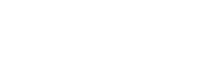 The-Performance-Institute-Logo-White