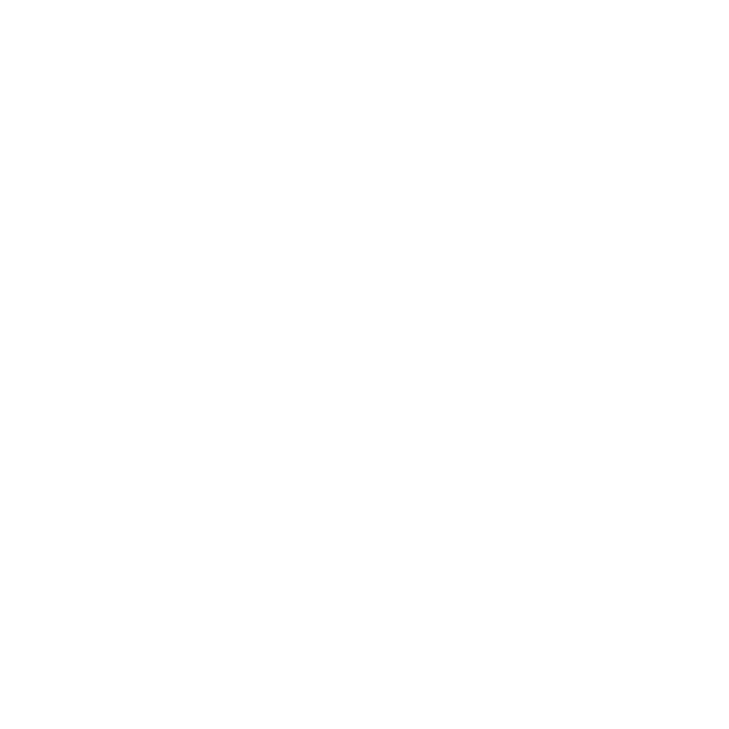TPI-White-Course Icons_Performance Budgeting